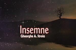 INSEMNE2
