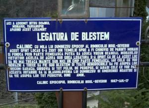 Frasinei Blestem